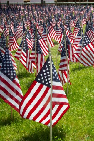 A field filled with American flags